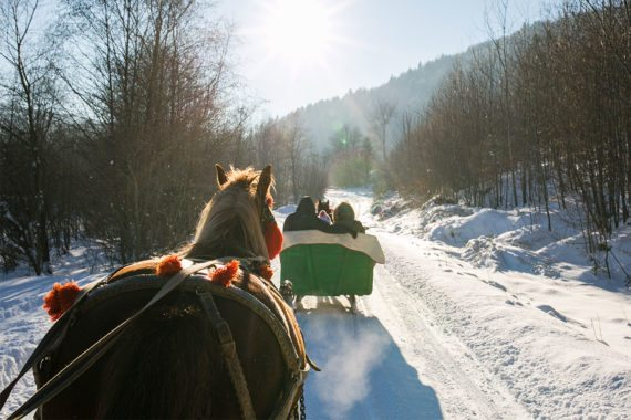 Pferdeschlittenfahrten - Winterurlaub in Eben im Pongau