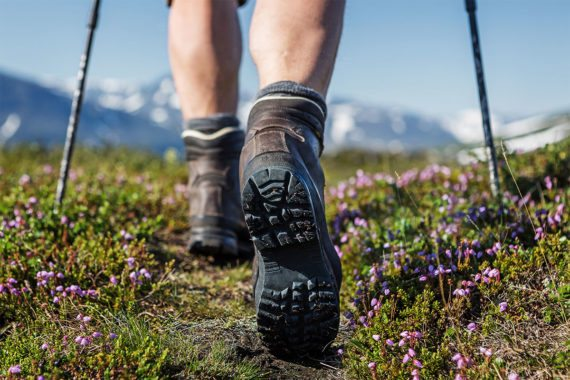 Wandertouren in der Region, Sommerurlaub in Eben im Pongau, Salzburger Land